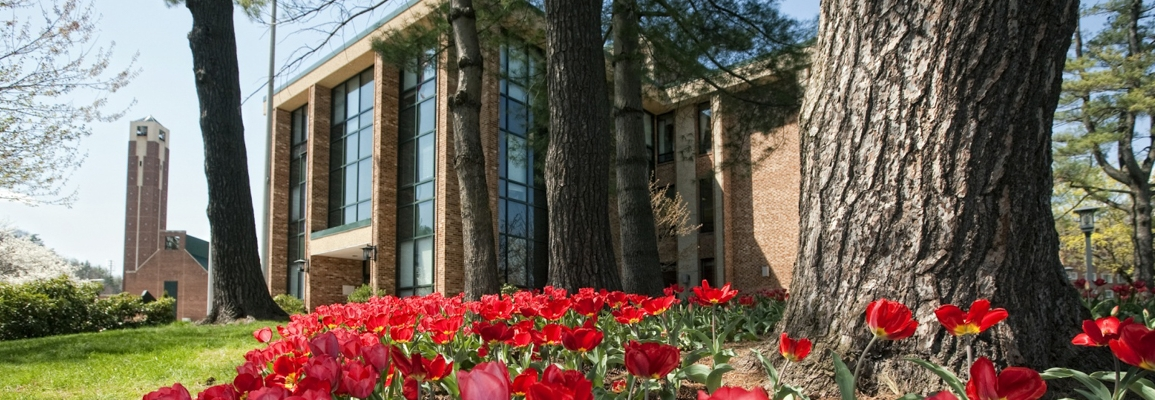 Administration building in spring with tulips in foreground