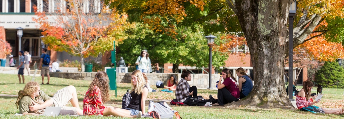 Students on lawn in the fall